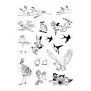 Gelová razítka MAXI velikost balení 20x30cm - Ptáci