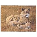 Malování podle čísel- Lvice s lvíčaty