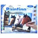 Malování podle čísel- Koňské hlavy