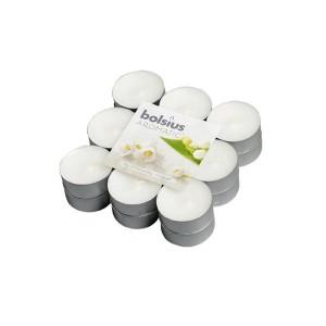 Svíčka čajová Bolsius, 3,8 x 2 cm, konvalinka